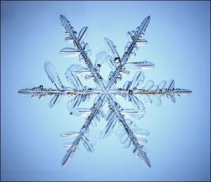 snow_flake_03
